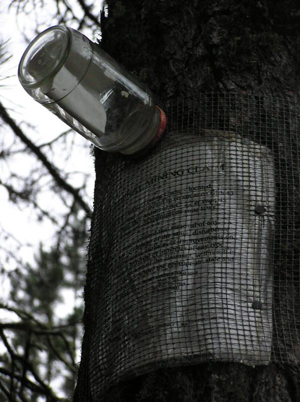 b_treemail